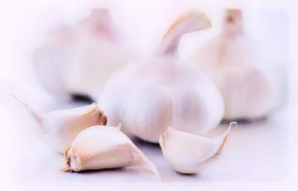 april 19 N garlic.jpeg