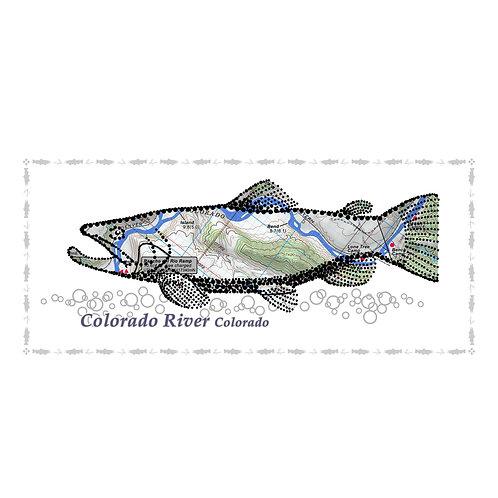 Colorado River fish poster