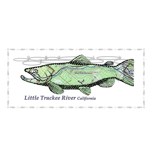 Little Truckee River Fish Poster