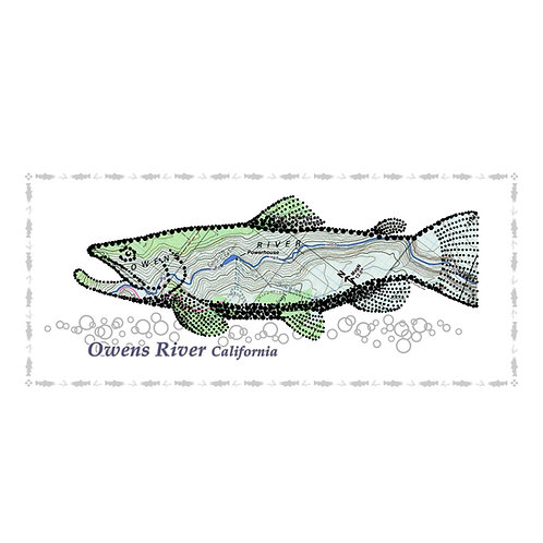 Owens River Fish Poster