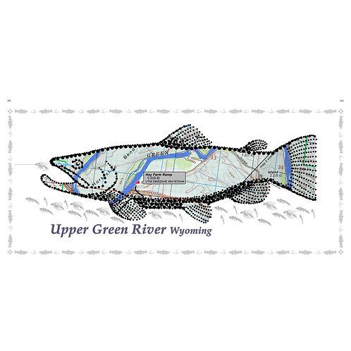 Upper Green River Fish Poster