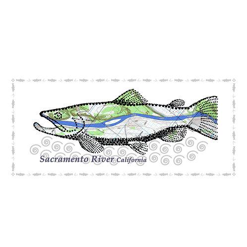 Sacramento River Fish Poster
