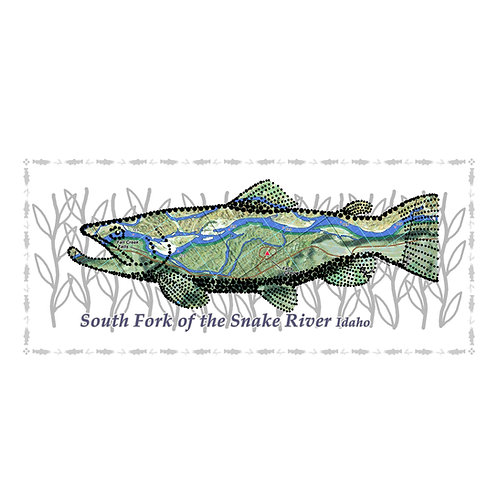 Snake - South Fork - River Fish Poster