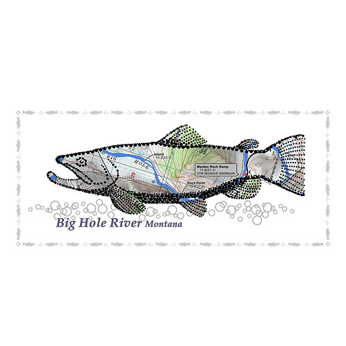 Big Hole River trout poster