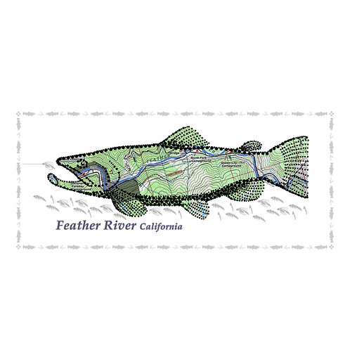 Feather River Fish Poster