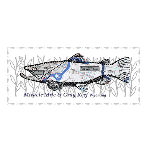 North Platte River Fish Poster