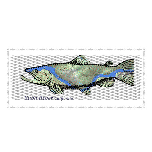 Yuba River Fish Poster