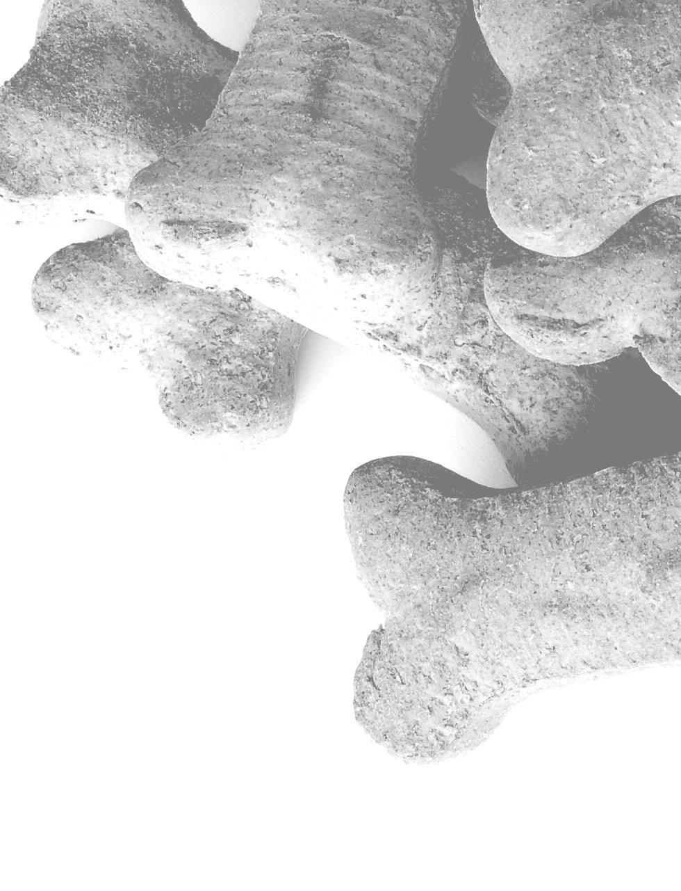 Bone Cookies