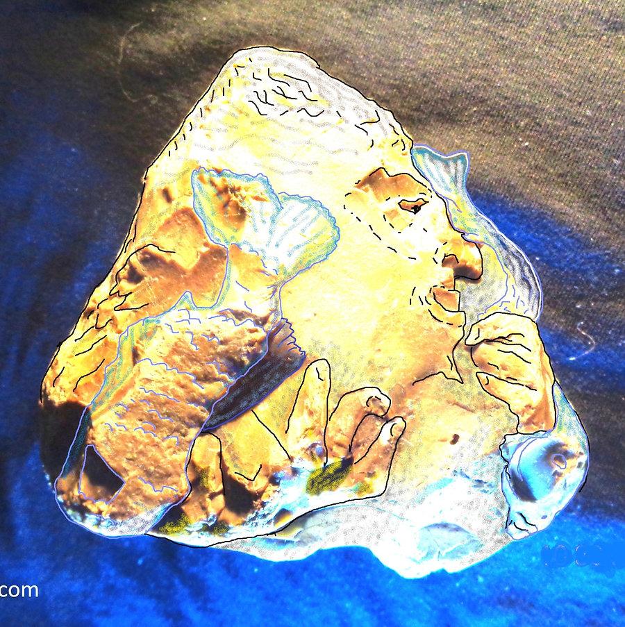 камнепись