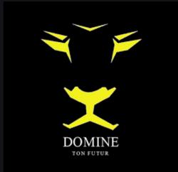 Domine Ton Futur