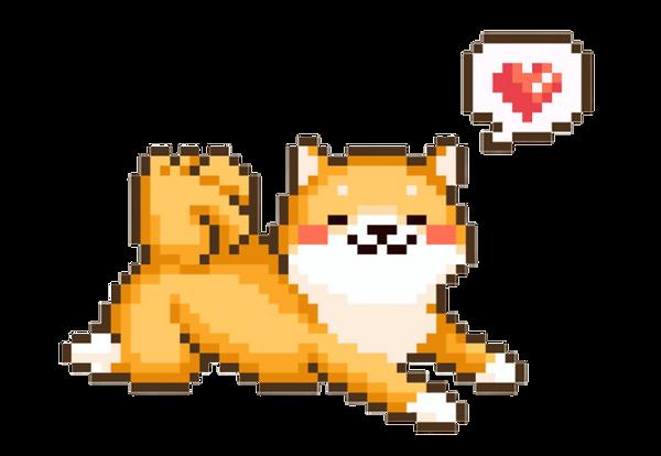 Cute shiba dog