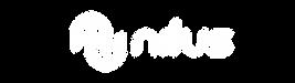 wix_logo_white.png