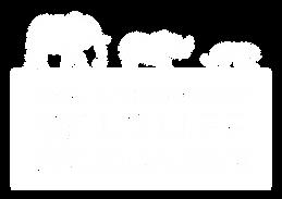DSWF LOGO - WHITE w TRANS.png