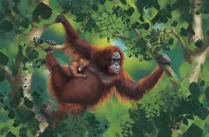 Orangutan_Small_edited.jpg