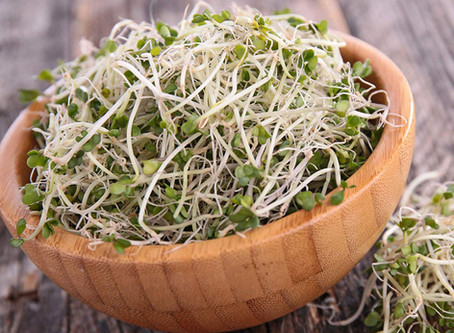 What is Broccoli Sprout extract?