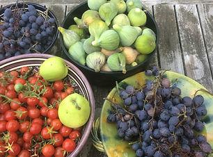 fruits_et_légumes_du_jardin_.jpeg