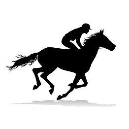 Horse square.jpg