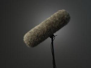 the-mic-4540749_1920.jpg