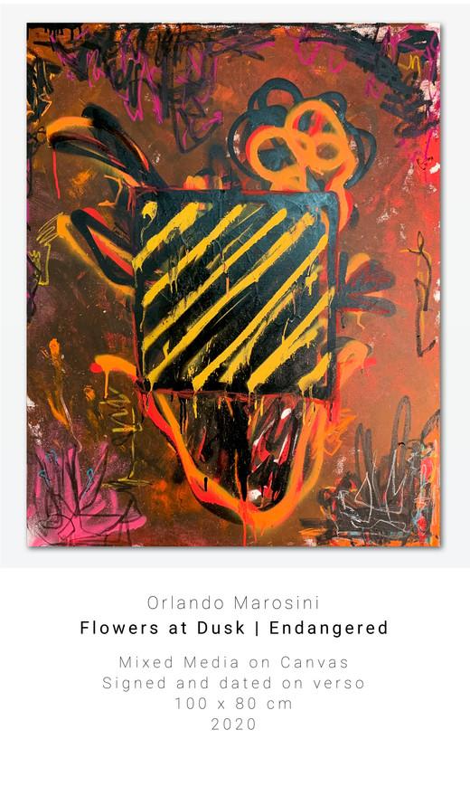 Flowers at Dusk   Endangered   Orlando Marosini