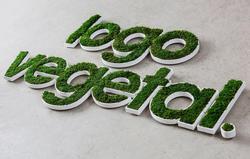 lettres-vegetales-relief-6