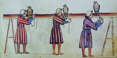 De arte venandi cum avibus, Sicilia, 1240-1260