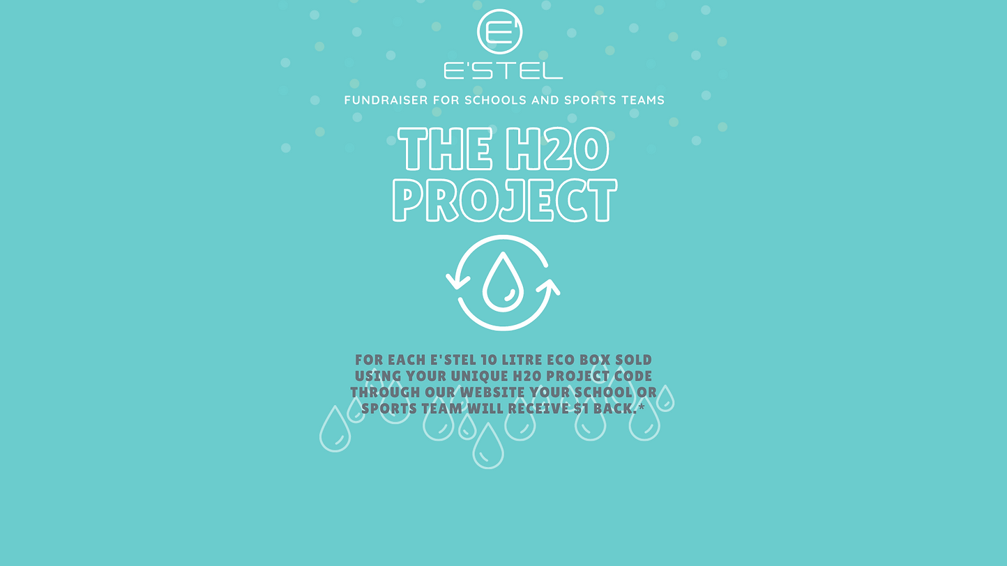 _The H20 Project Fundraising Website.png
