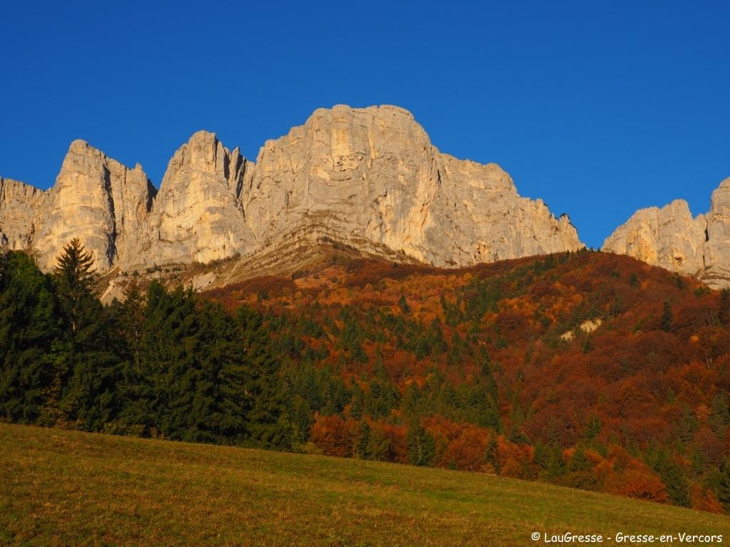 GEV_automne_arbre©LP