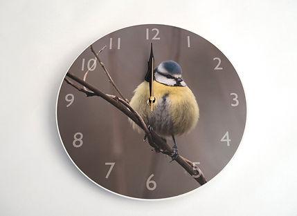 Blue Tit Clock