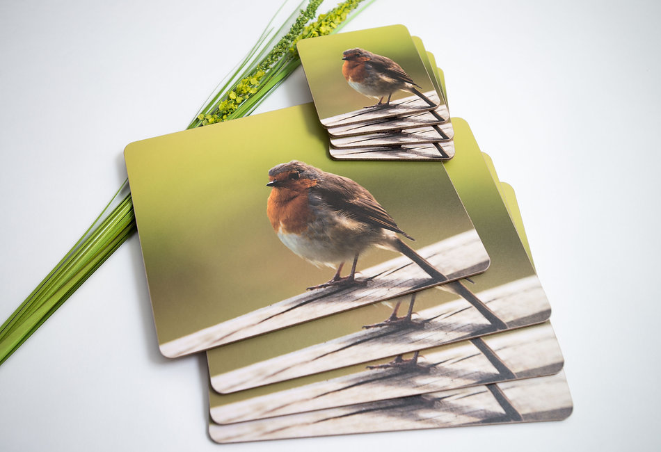Robin Placemats & Coasters.jpg