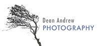 Tree Point logo 5 .jpg