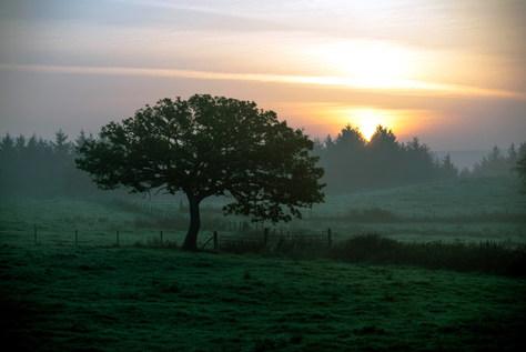 Sun Rise_edited.jpg