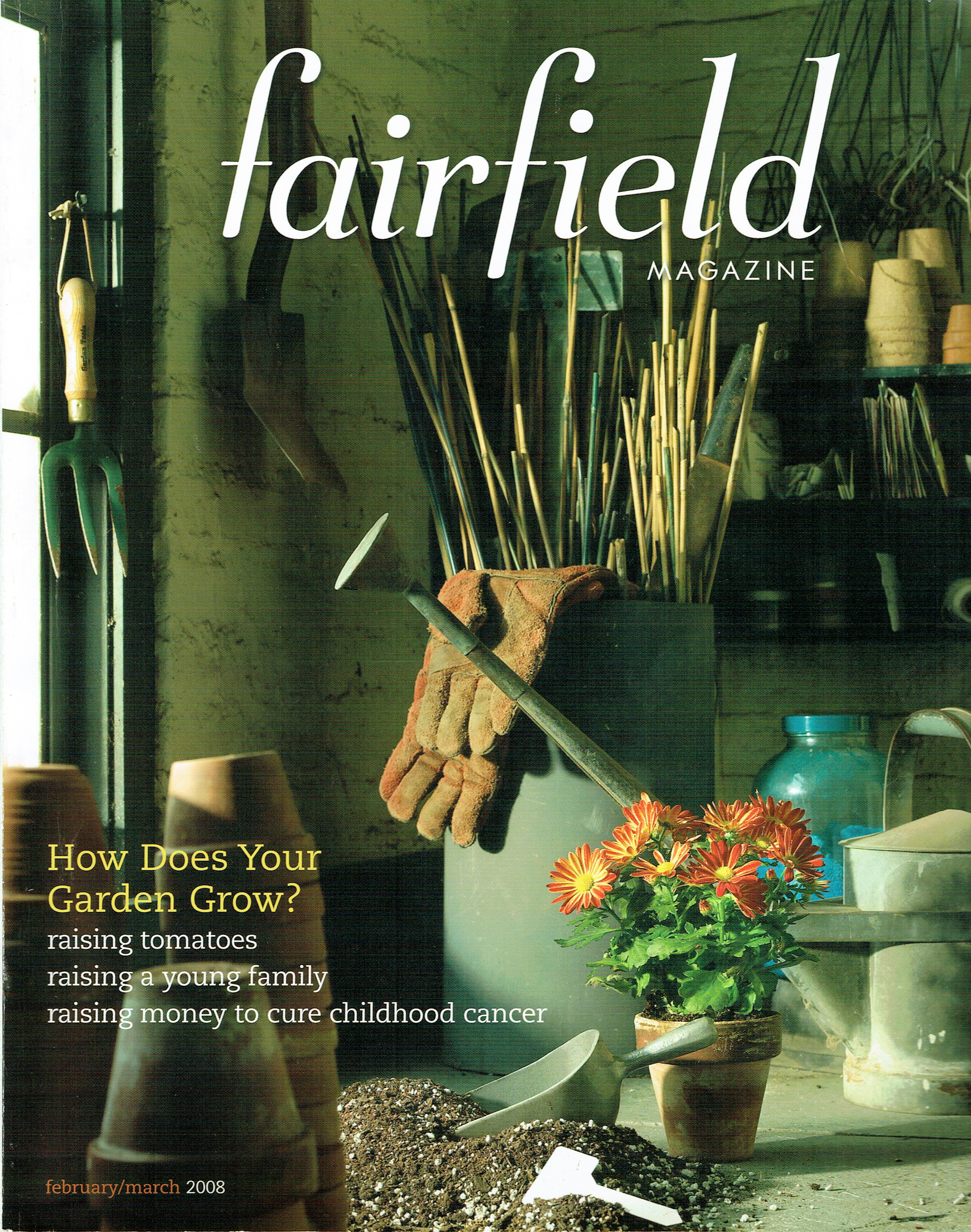 Fairfield Magazine Article-Project Art COVER.jpeg