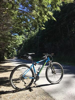 Circuito Chico Adventure | Alquiler de bicicletas Circuito Chico | MTB tours en Bariloche | Excursiones de bicicleta en San Martin de los Andes | Bicicletas Alquile en Villa la Angostura | Turismo Aventura en Patagonia | 7 lagos en bici | Cicloturismo en Patagonia | Cycling Patagonia