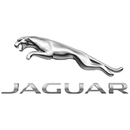 jaguar_1.png