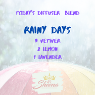 TDB Rainy Days