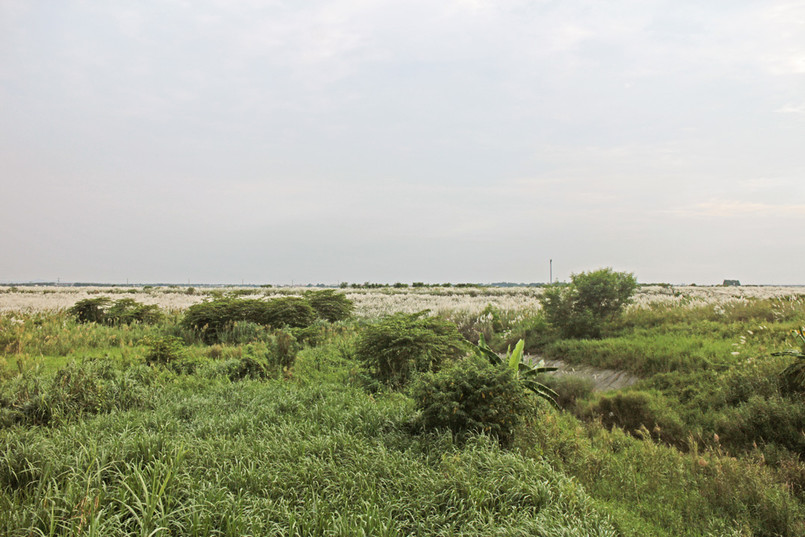 親水橋與八掌溪風光