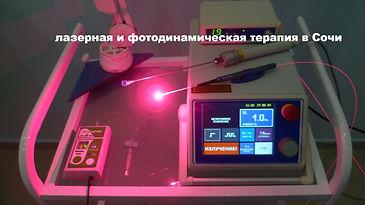 P1130012_edited.jpg
