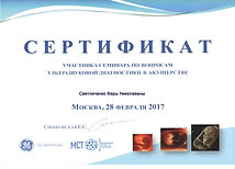 9.серификат по УЗИ Светличенко 2017.jpeg
