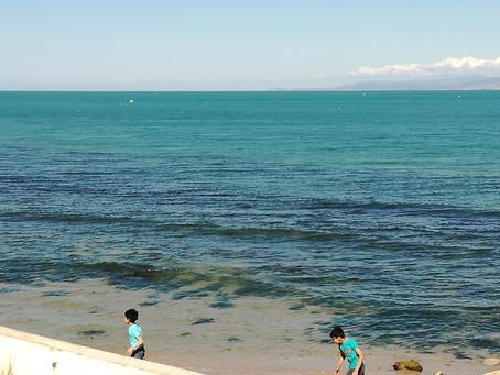 Hilsen fra Kristine i Tunisia: Håpsindustrien