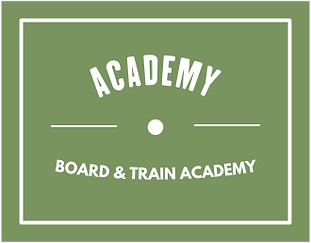 board-train-academy-image.png