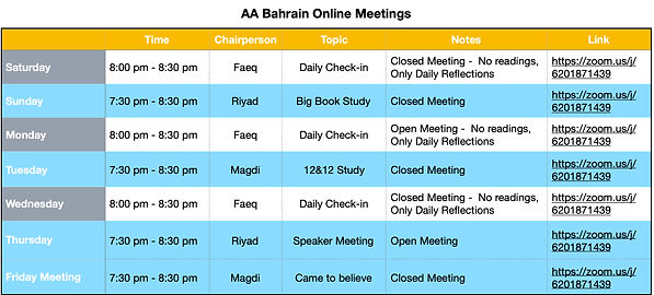 Online Meetings 2020 copy.jpg