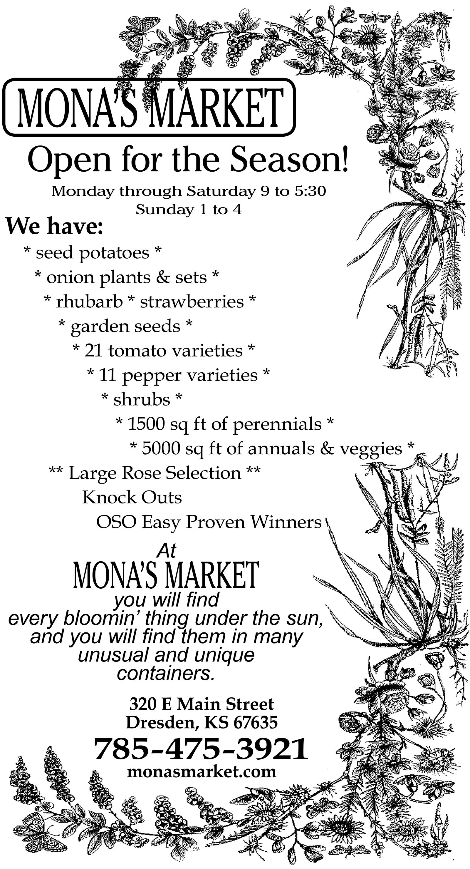 Mona's Market 2019