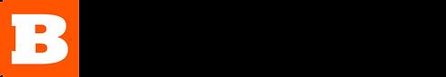 Breitbart News.png