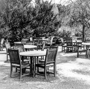 Harlow Carr Cafe in Winter