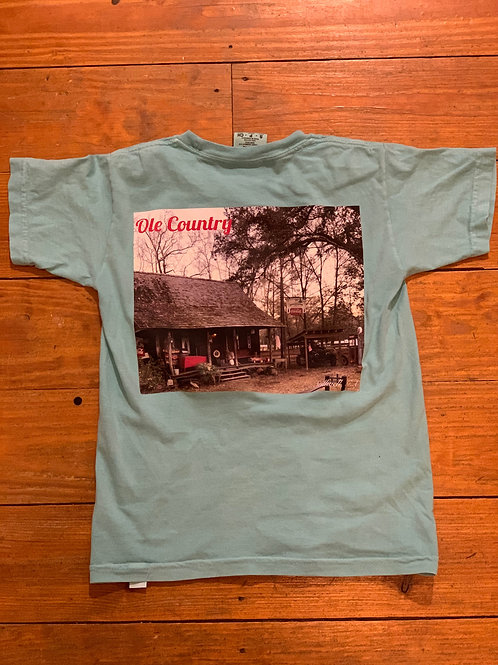 Comfort Color Tee Chalky Mint Youth