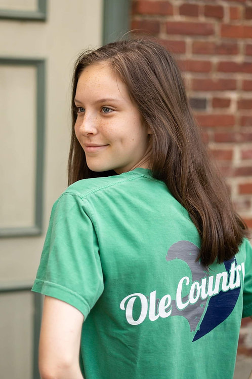 Comfort Color Tee Green Youth
