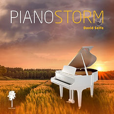David Selfe piano storm Booklet Front.jp