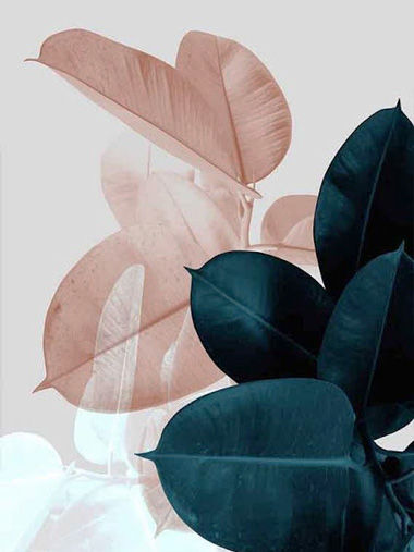 Tendencia-Cromatica-02.jpg