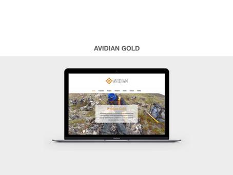 AVIDIAN GOLD