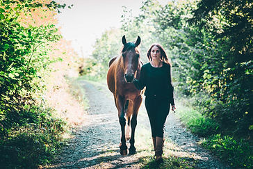 Dyanimal, dynamisches Pferdetraining
